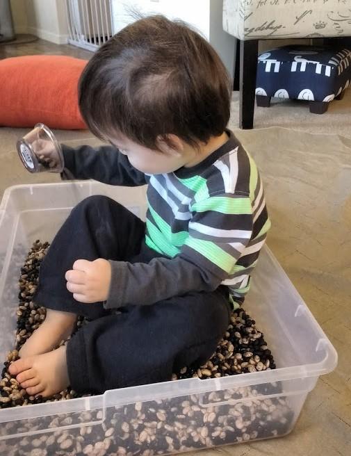 bean rice bin